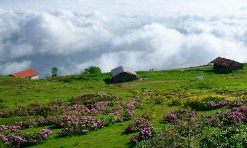 Trabzon Highlands Safari Tour